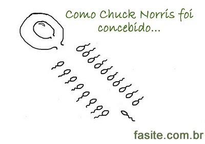 Como Chuck Norris foi concebido 5