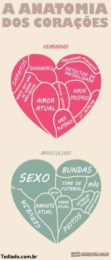 A anatomia dos corações 6
