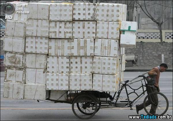 mestre_transporte_13