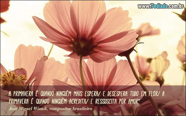 frases_primavera_07