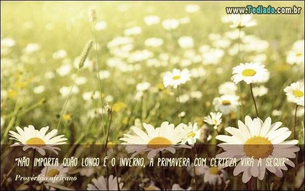 frases_primavera_15