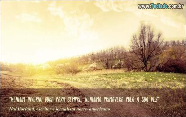 frases_primavera_24