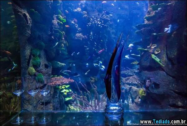 restaurante_subaquatico_02