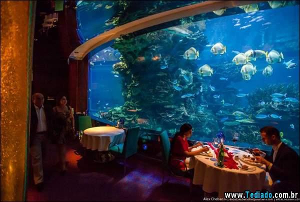 restaurante_subaquatico_08