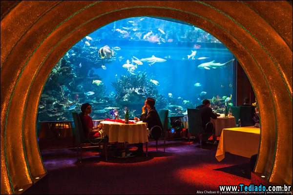 restaurante_subaquatico_13