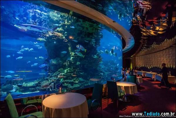 restaurante_subaquatico_18