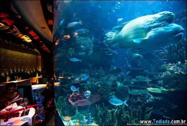 restaurante_subaquatico_20