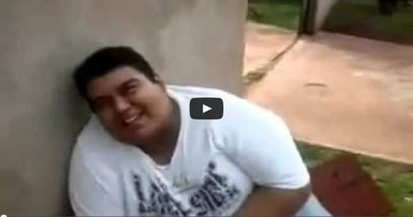 Gordo quase explode rindo 1