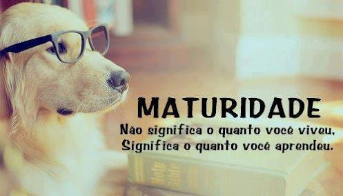 frases_para_status_03