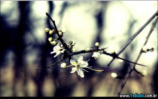fotos-legais-03