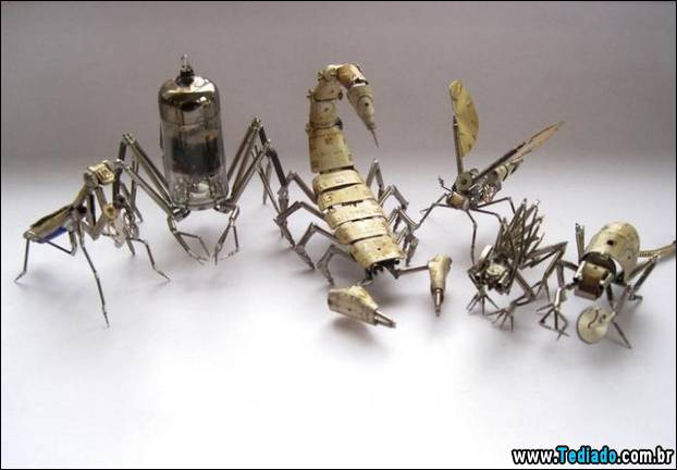 insetos-relogios-05