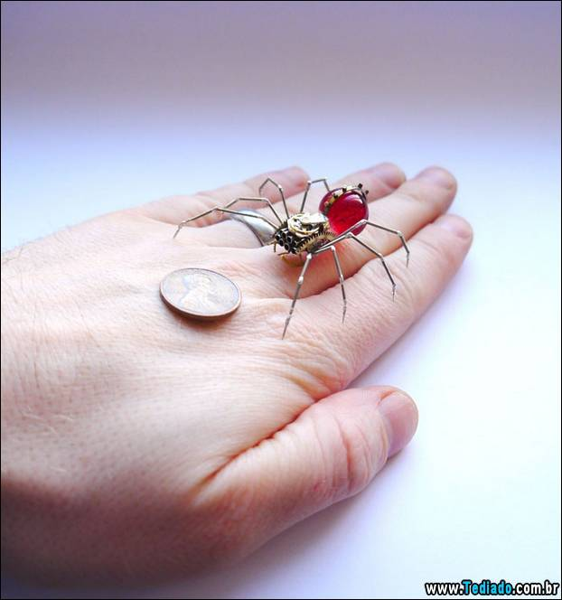 insetos-relogios-07