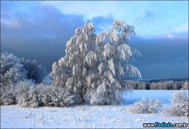 fotos-impressionantes-da-natureza-do-inverno-04