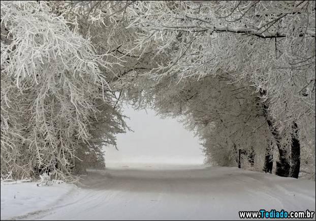 fotos-impressionantes-da-natureza-do-inverno-09