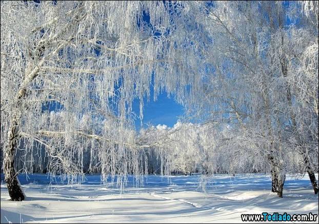 fotos-impressionantes-da-natureza-do-inverno-13