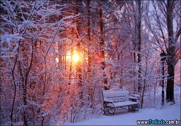 fotos-impressionantes-da-natureza-do-inverno-14