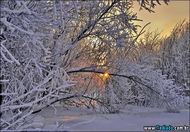 fotos-impressionantes-da-natureza-do-inverno-15