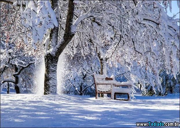 fotos-impressionantes-da-natureza-do-inverno-17