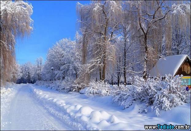 fotos-impressionantes-da-natureza-do-inverno-18