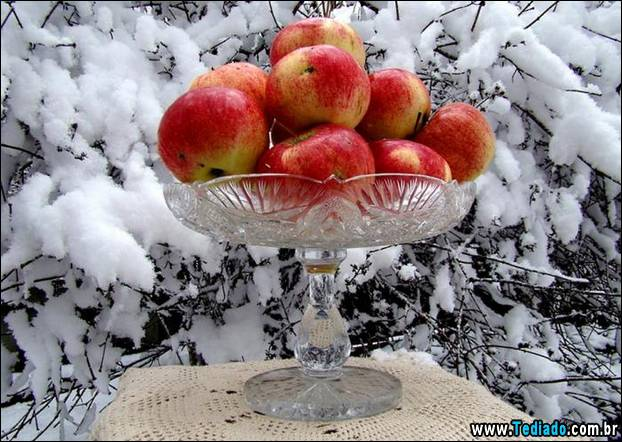 fotos-impressionantes-da-natureza-do-inverno-20