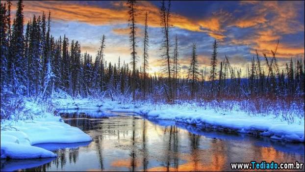 fotos-impressionantes-da-natureza-do-inverno-26
