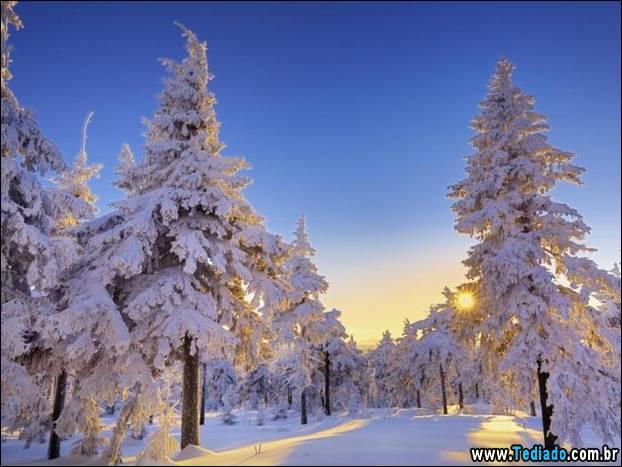 fotos-impressionantes-da-natureza-do-inverno-31
