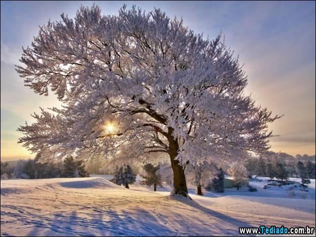 fotos-impressionantes-da-natureza-do-inverno-32