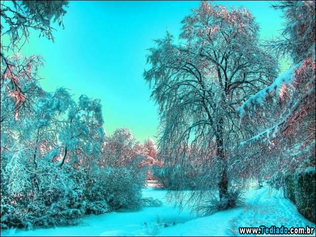 fotos-impressionantes-da-natureza-do-inverno-36