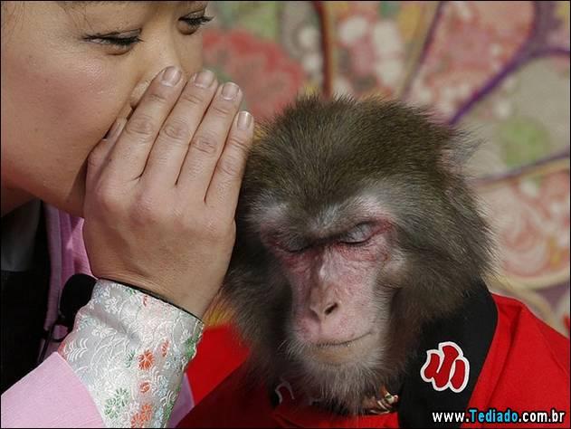 melhores-imagens-de-animais-07