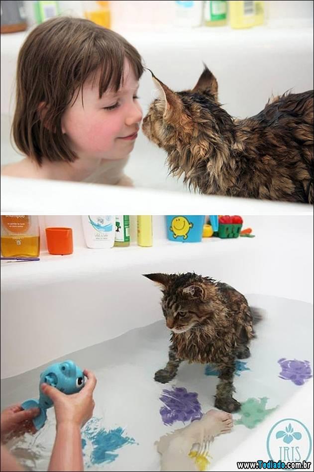 gatos-que-nao-tem-medo-de-agua-05