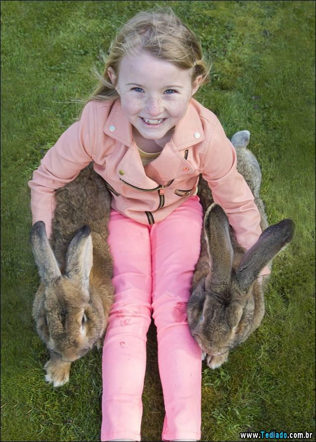 maior-coelho-do-mundo-050