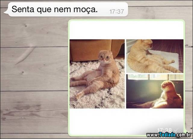whatsapp-08
