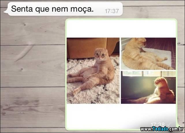 whatsapp-08