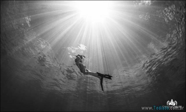 belas-fotografias-subaquaticas-01
