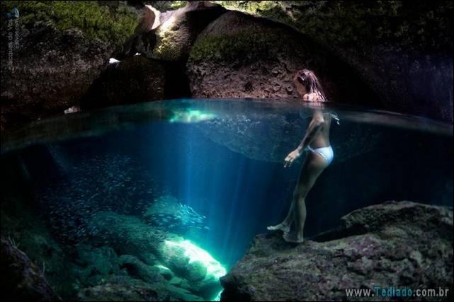 belas-fotografias-subaquaticas-15