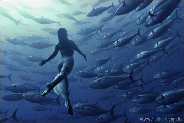 belas-fotografias-subaquaticas-22