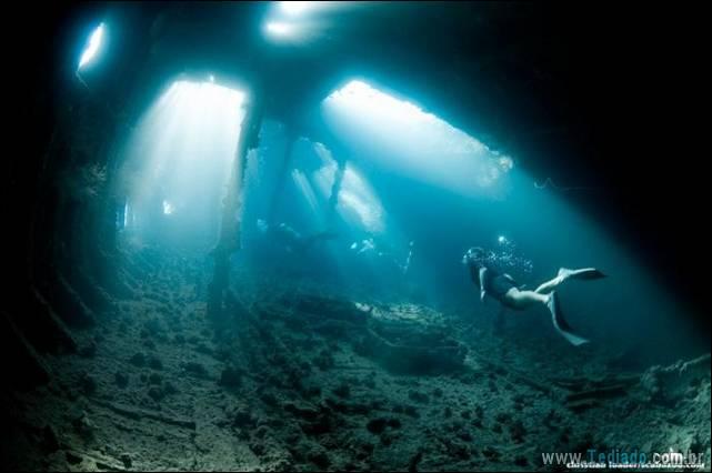 belas-fotografias-subaquaticas-27