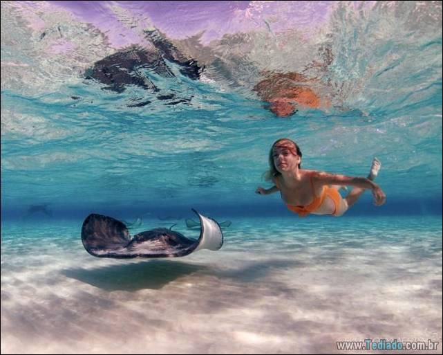 belas-fotografias-subaquaticas-32