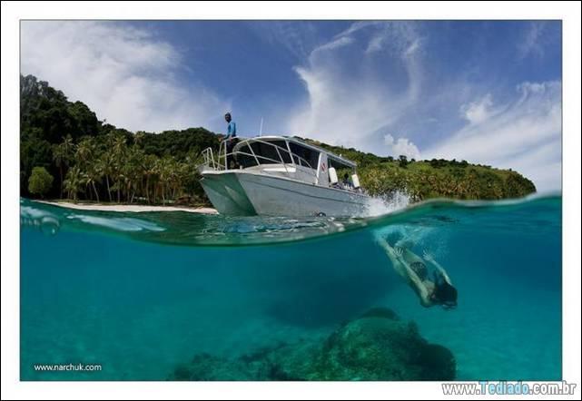belas-fotografias-subaquaticas-40