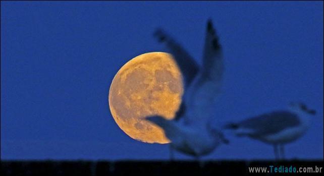 eclipse-da-lua-26