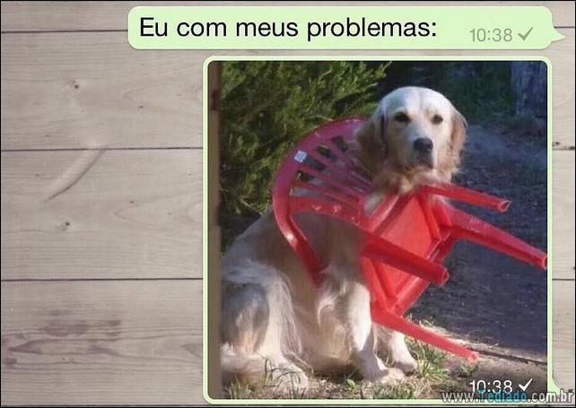 conversar-whatsapp-16