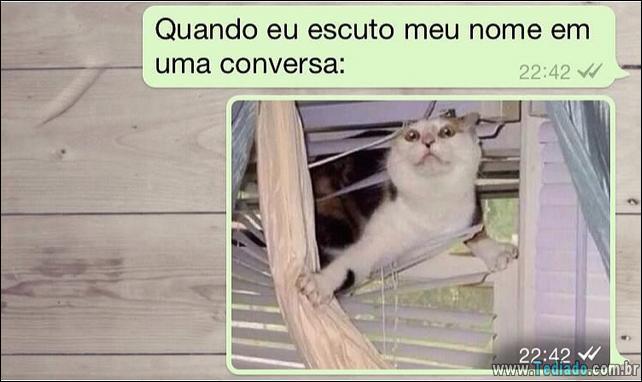 conversar-whatsapp-22