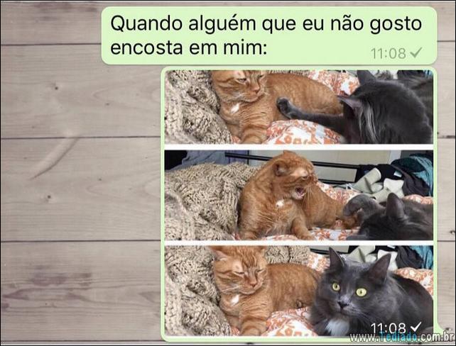 conversar-whatsapp-25