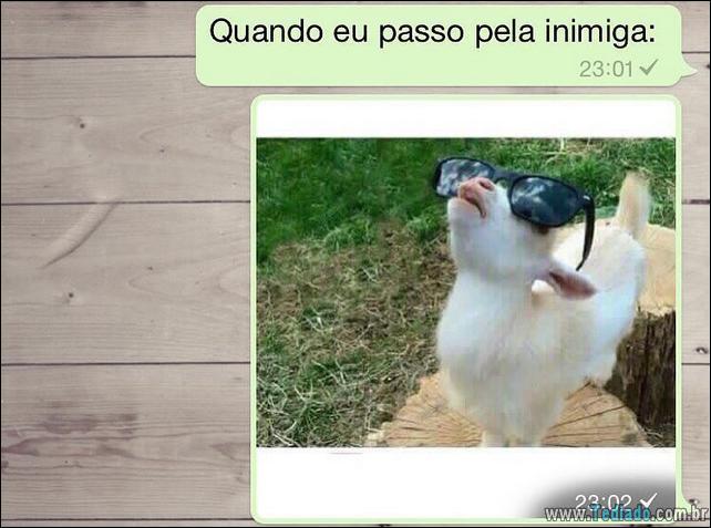 conversar-whatsapp-33