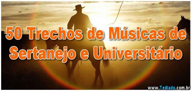 50 Trechos De Músicas De Sertanejo E Universitário Blog Tediado