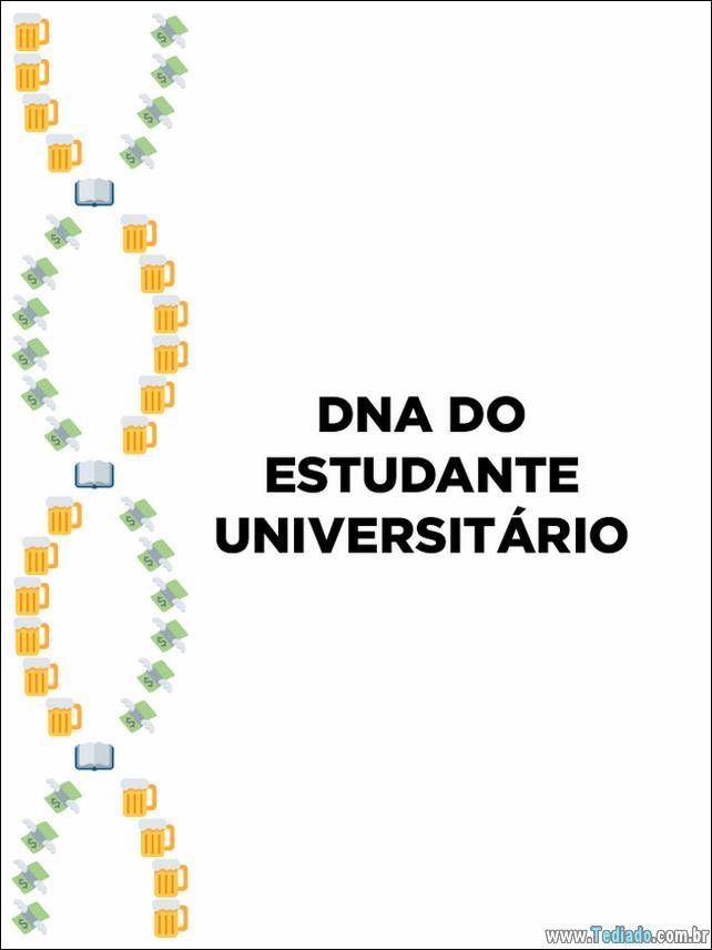 dns-emoji-brasileiro-04