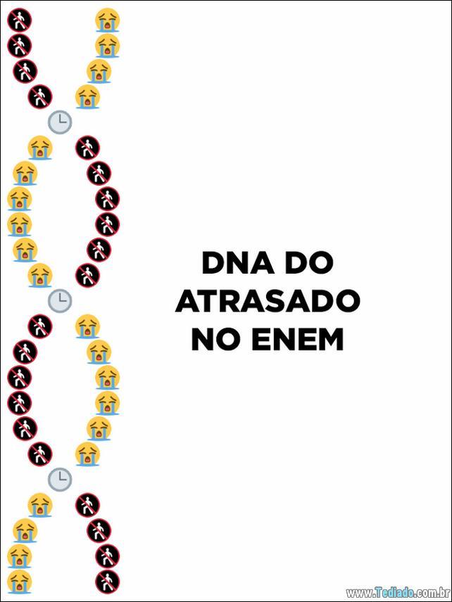 dns-emoji-brasileiro-05