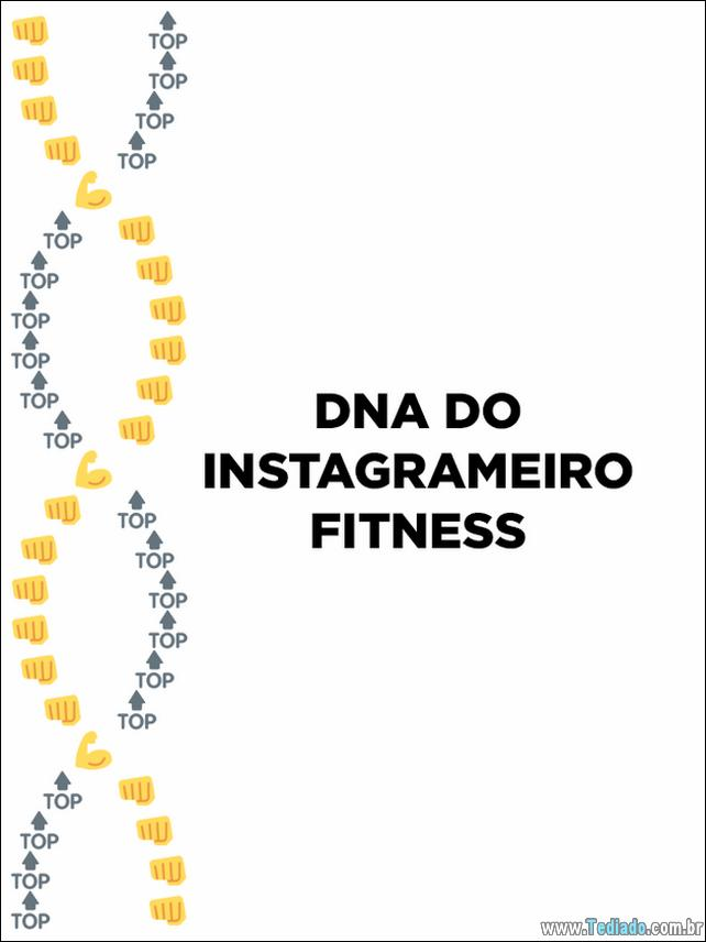 dns-emoji-brasileiro-06