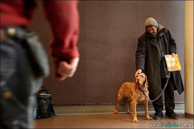 morador-de-rua-e-seus-cachorros-04