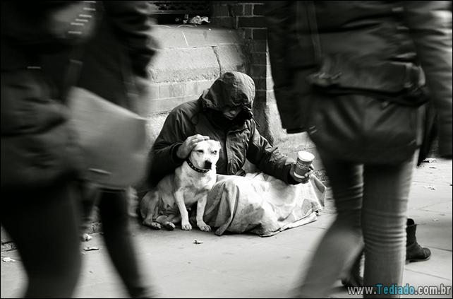 morador-de-rua-e-seus-cachorros-05